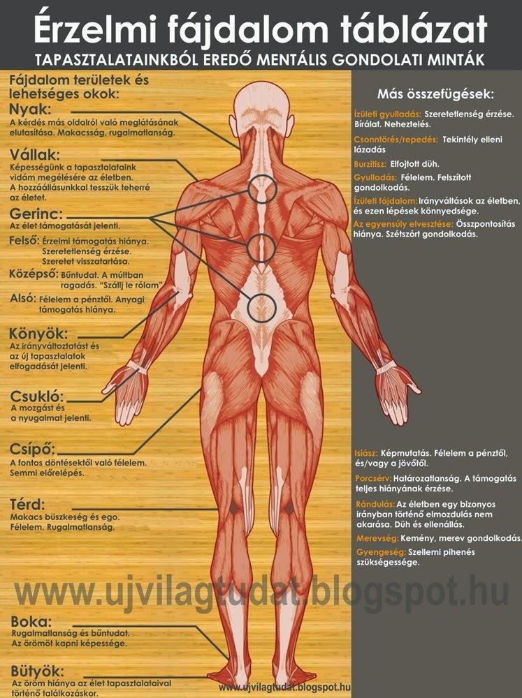 Negatív érzelmek hatása az egészségünkre
